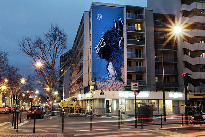 C215 Legal Piece in Paris